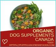 Best quality dog food canada